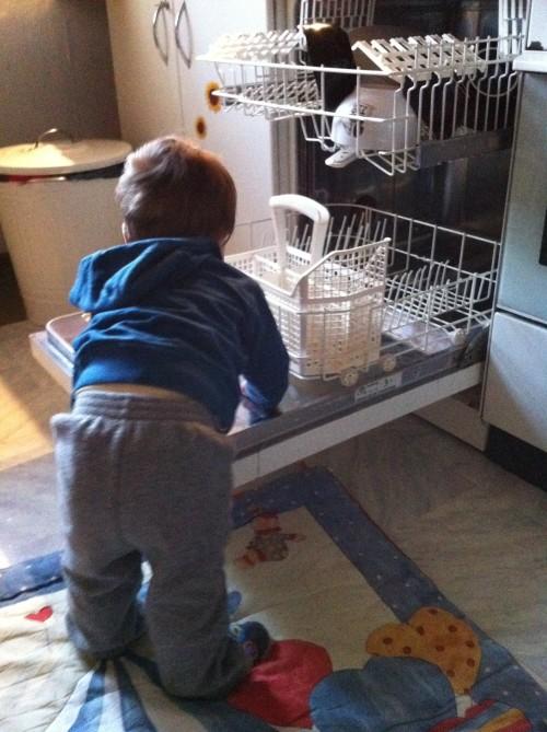 minime und sein lieblingsspielzeug
