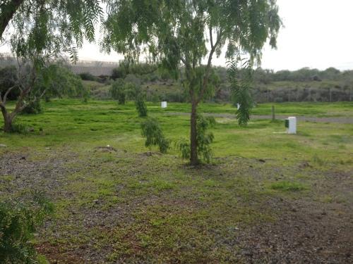 Der Campingplatz Nauta, Teneriffa