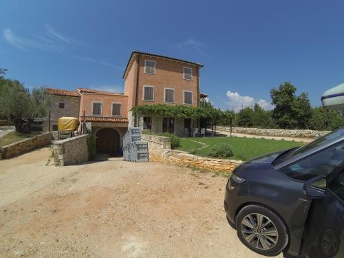 Oliven und Trauben für leckeren Weißwein - dafür ist die Region bekannt