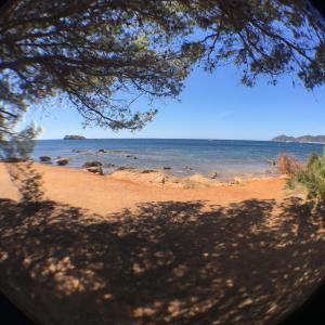 Ausblick auf die Cala Martina vom Campingplatz