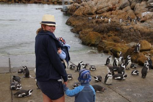 Vereinbarkeit im Tourismus: Vorbild Tierreich - auf viele SChultern teilen