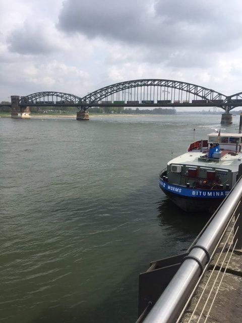 Der Rhein