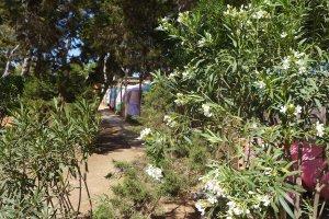 Wohnwagen auf Camping La Playa